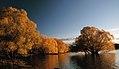 Autumn at Lake Tekapo NZ (24) (8670102981).jpg