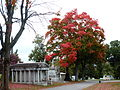 Autumn colors in the Allegheny Cemetery.jpg