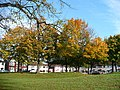 Autumn colour, Mendalgief Road - geograph.org.uk - 1044209.jpg