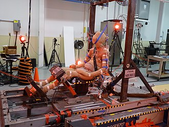Crash test dummy - Cadaver used during a frontal impact test.
