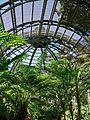 Balboa Park Botanical Building interior.jpg