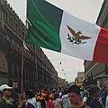 Bandera de México - Protesta contra reforma energética, CDMX, 2008.jpg