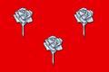 Bandiera di Fiorenzuola.png