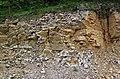 Baraboo Quartzite (upper Paleoproterozoic, ~1.7 Ga; Rt. 12 roadcut, South Range, Baraboo Ranges, Wisconsin, USA) 2 (18803261122).jpg