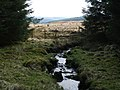 Barr Burn - geograph.org.uk - 762283.jpg