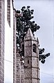 Basílica de Nuestra Señora del Pino, Teror 08(js).jpg