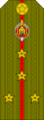 Belarus MIA—07 Captain rank insignia (Olive)—SR.png