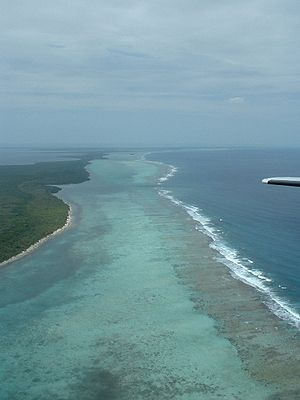 Belize Barrier Reef Aerial Looking North
