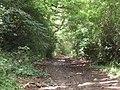 Belvidere Road, Exeter - geograph.org.uk - 1403126.jpg