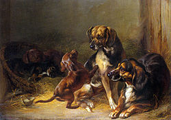 Benno Adam - Dogs and Whelps.jpg