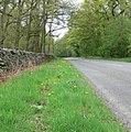 Benscliffe Road near Leicester - geograph.org.uk - 409908.jpg
