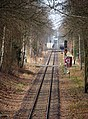 Bergen Gleis zur Rampe Belsen.jpg