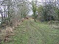 Between the gravel pits - geograph.org.uk - 620565.jpg