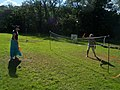 Bickleigh , Badminton at the Maize Maze - geograph.org.uk - 1224866.jpg