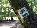 Bikeroad, Rusalka, Poznan.jpg