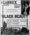 Black Beauty (1921) - 4.jpg