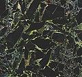 Black Beauty Granite (breccia) (Værlandet Island, Norway) 5.jpg