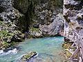 Bled Vintgar-Klamm 46.JPG