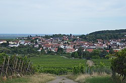 Blick auf Leistadt aus dem Wingert vom Wanderweg.jpg