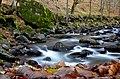 Borjomi Slow river (8206132646).jpg