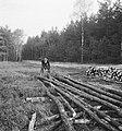 Bosbewerking, arbeiders, boomstammen, werkzaamheden, Bestanddeelnr 253-5978.jpg