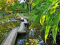 Botanička bašta Jevremovac, Beograd - Japanski vrt 15.jpg
