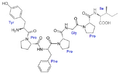 Bovine β-casomorphin 7.png