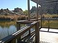 Boyce Thompson Arboretum, Superior, Arizona - panoramio (10).jpg