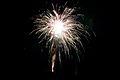 Bray Fireworks (6994404571).jpg