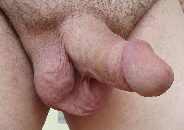 shemales cumming in their own mouths