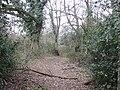 Brickhill Green - geograph.org.uk - 193615.jpg