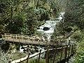 Bridge Crossing Watersmeet Devon - geograph.org.uk - 366580.jpg