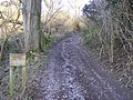 Bridleway leads into Hucking Wood Estate - geograph.org.uk - 1165323.jpg