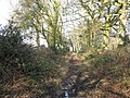 Bridleway north to Inholmes Cottage - geograph.org.uk - 1702356.jpg