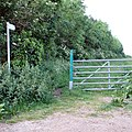 Bridleway past small copse - geograph.org.uk - 453171.jpg