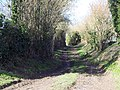 Bridleway to Chilmark from Upper Chicksgrove - geograph.org.uk - 338600.jpg