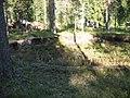 Brintbodarna vändskiva 20050901.jpg
