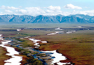 Arctic National Wildlife Refuge - Area 1002 of the Arctic National Wildlife Refuge coastal plain, looking south toward the Brooks Range mountains.