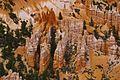 Bryce Canyon National Park 03.jpg