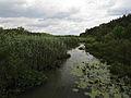 Bucha river2.JPG