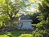 Buchanan grave