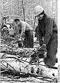 Bundesarchiv Bild 183-1986-0110-004, Botelsdorf, Forstarbeiter.jpg