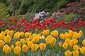 Butchart Gardens (145594859).jpg