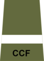 CCF AUO rank slide.png