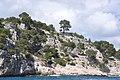 Calanque de Port Miou, Cassis, Provence-Alpes-Côte d'Azur, France - panoramio (5).jpg
