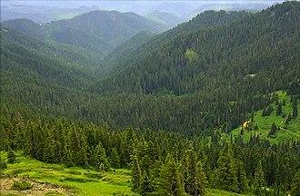 Calapooya Mountains - Image: Calapooya Mountains, Umpqua National Forest, Oregon