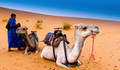 Camel-trekking-MErzouga-sahara.png