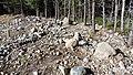 Canadian Dump (Mar Lodge Estate) (22SEP12) (09).jpg