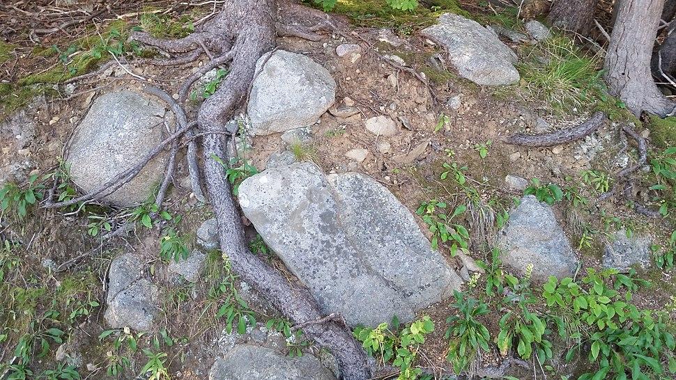 Cape Breton HIghlands National Park Freshwater Lake glacial debris