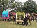 Captive elephants Sakrebyle Elephant camp DSCN9290.JPG